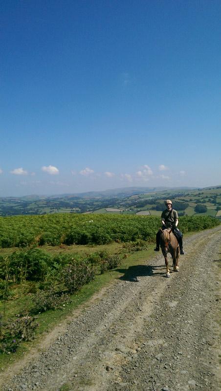free-rein-wales-radnor-hills